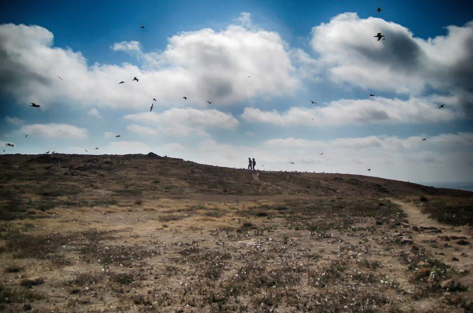 Berlengas, um fim-de-semana com as gaivotas