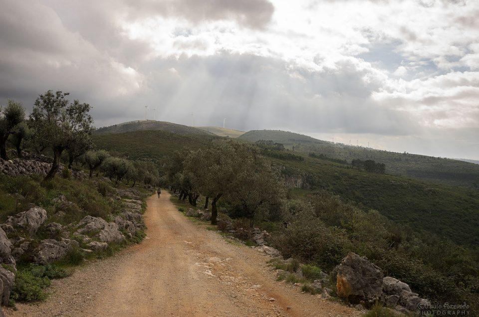 Caminhada por Terras de Sicó