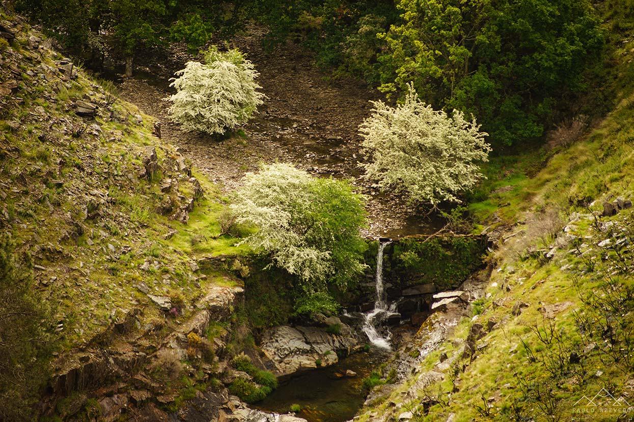Cascata perto de Drave