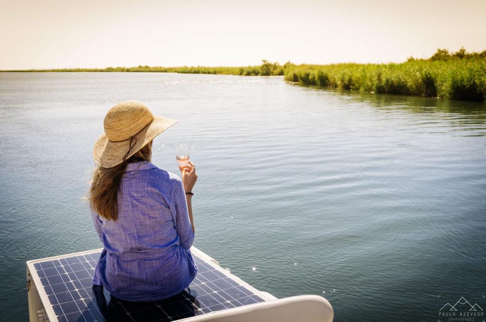 Deslizando em silêncio pela ria de Aveiro num barco com nome de ave