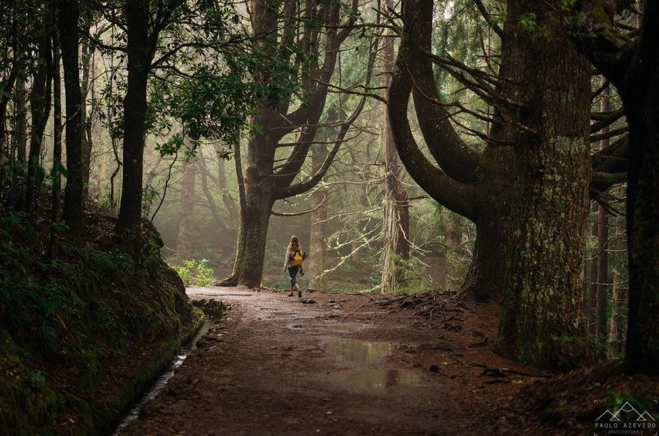 Duas caminhadas fáceis nas levadas da Madeira