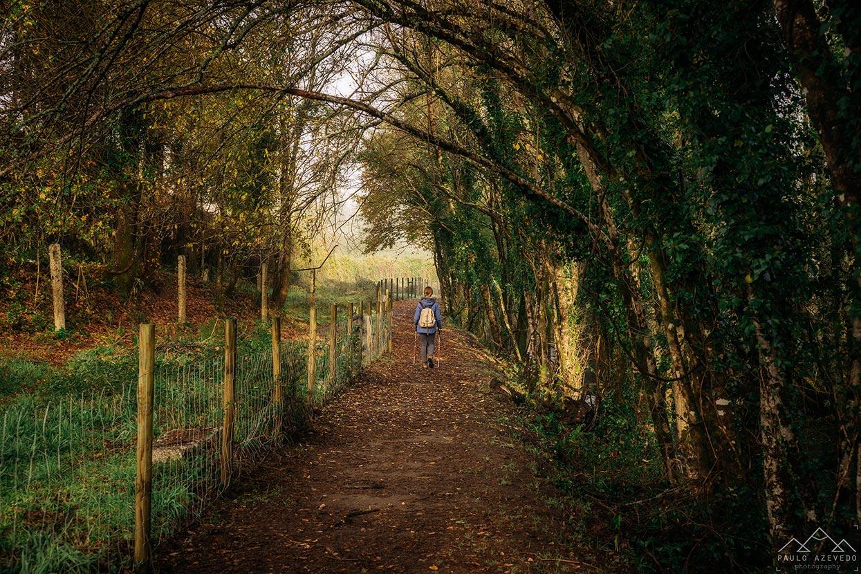 caminhando pela ecovia do vez