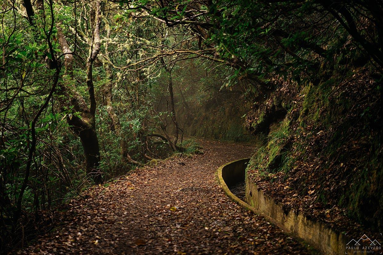 O que visitar na Madeira - Levada do Furado