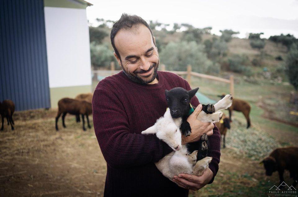 Idanha-a-Nova: 3 experiências autênticas e alternativas em Portugal