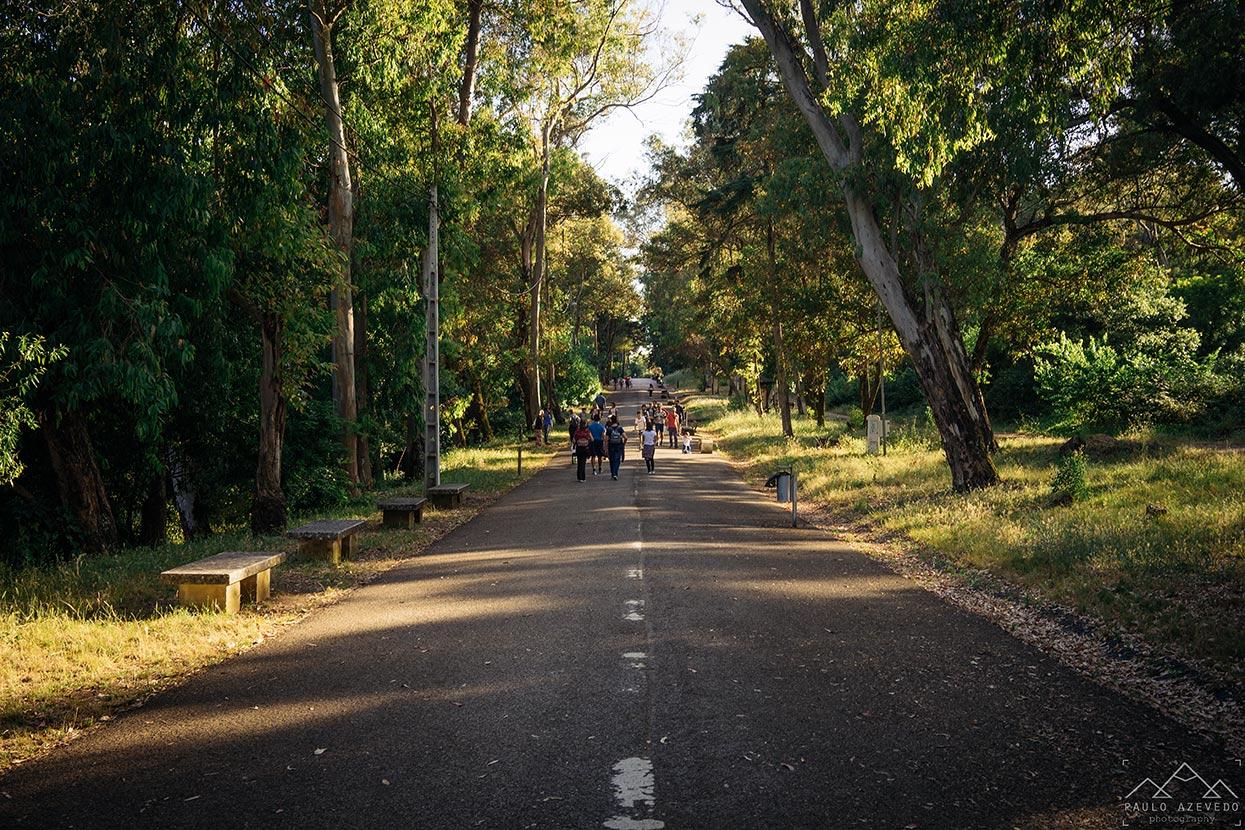 Alameda Keil do Amaral, Parque Florestal de Monsanto, Lisboa