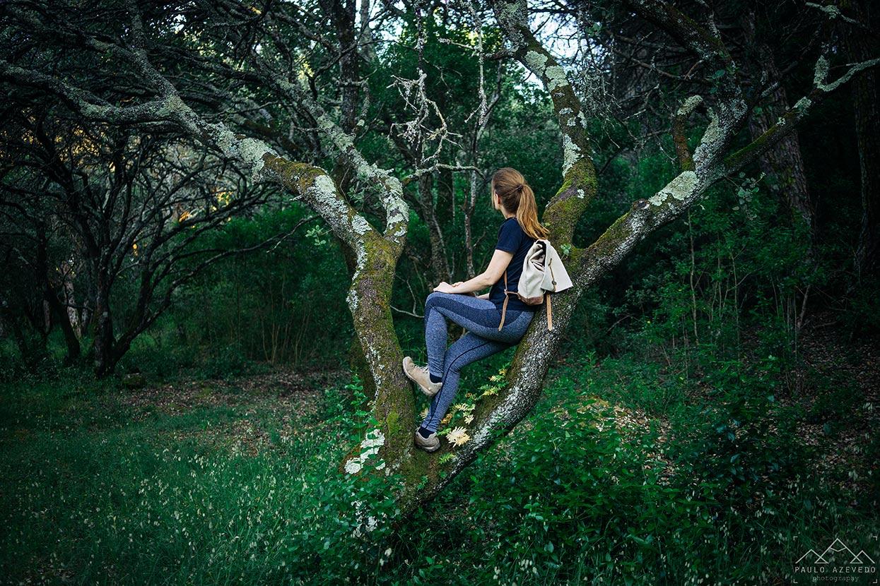 Sofia sentada numa árvore