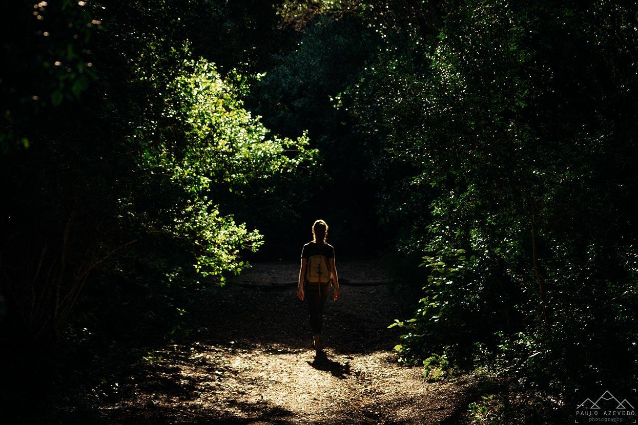 Trilho da Volta do Planalto, Parque Florestal de Monsanto, Lisboa