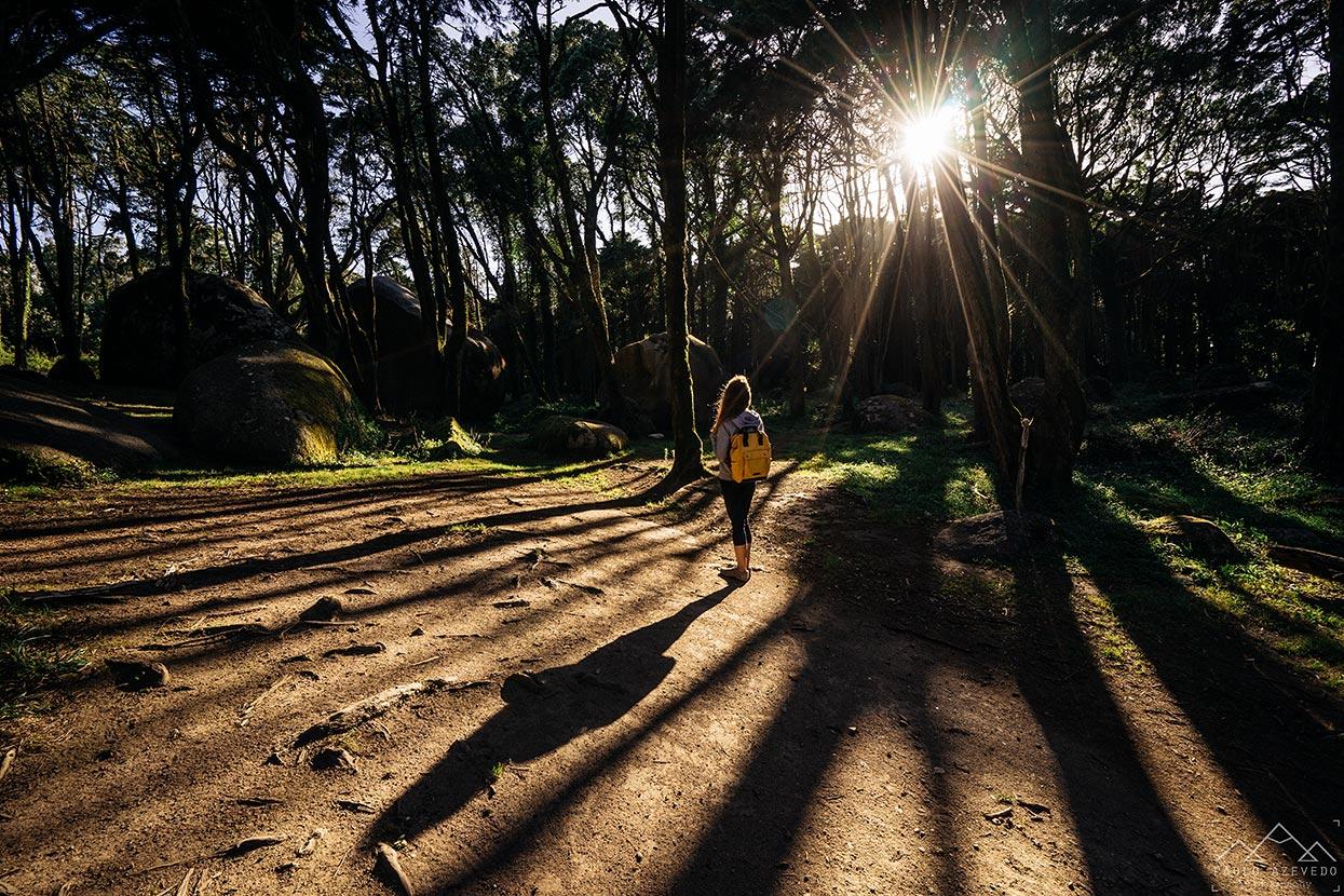 Raios de sol na Peninha, Sintra