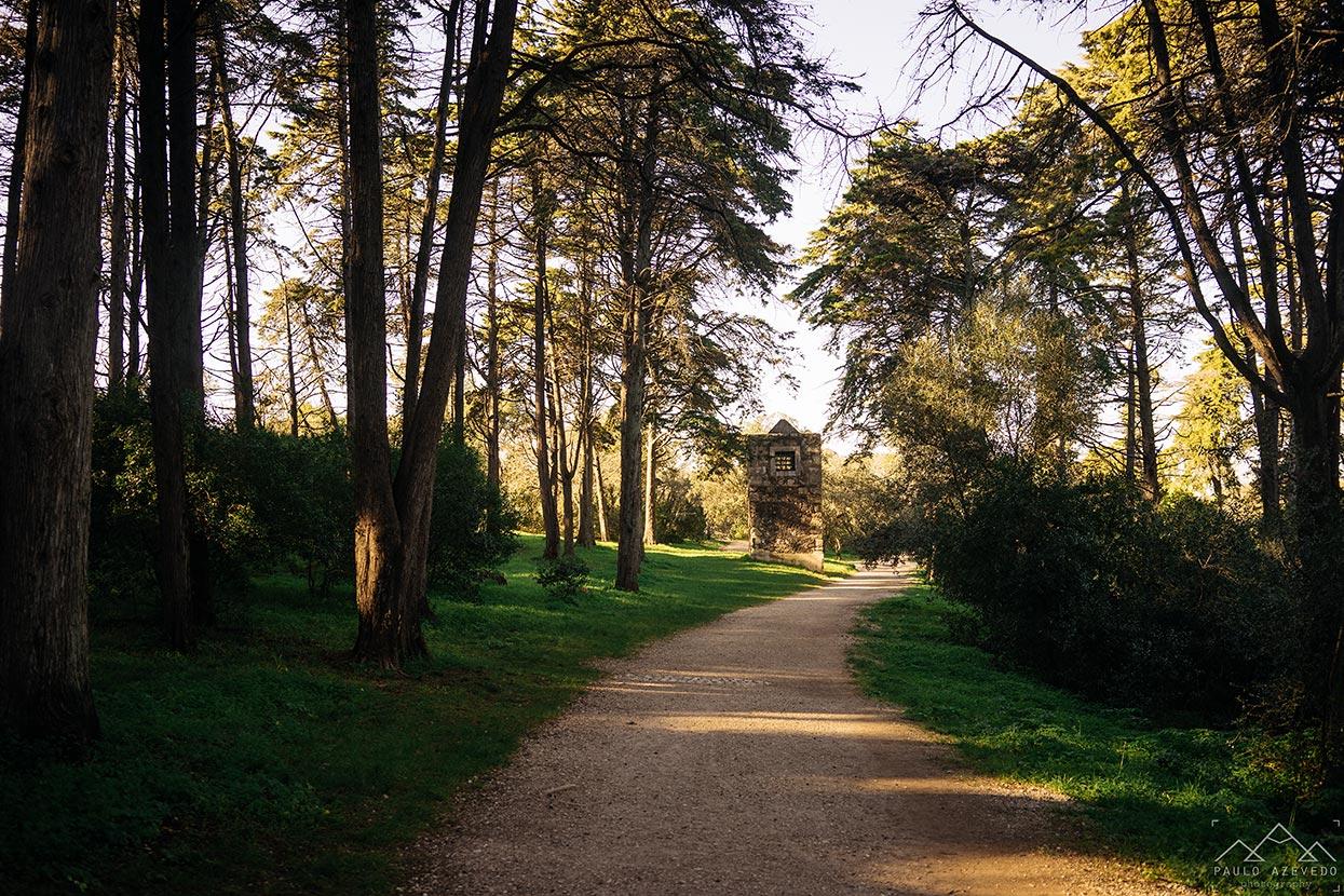 Pista do Aqueduto, Parque Florestal de Monsanto, Lisboa
