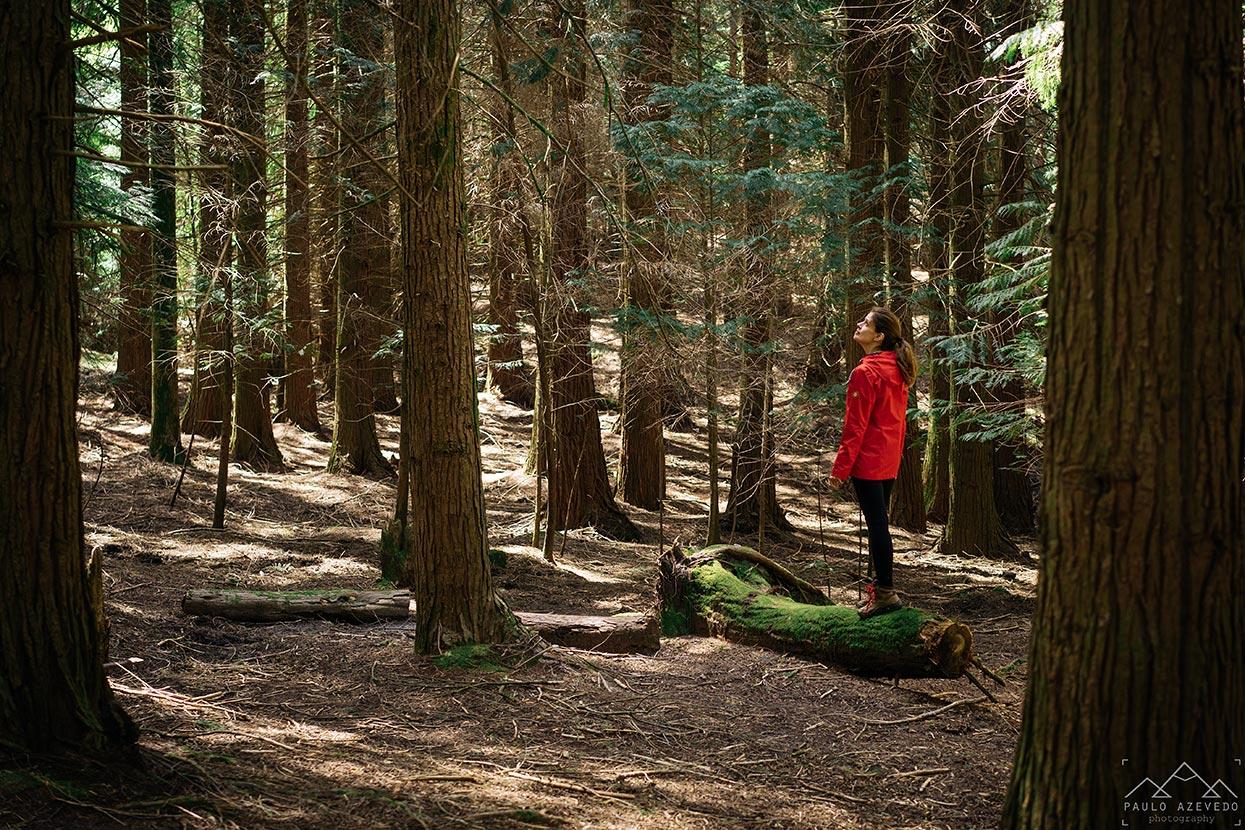 Sofia na floresta, Trilho das Brandas de Sistelo