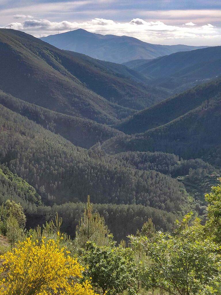 Vales de Loriga