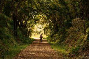 De bicicleta pela ecopista do montado