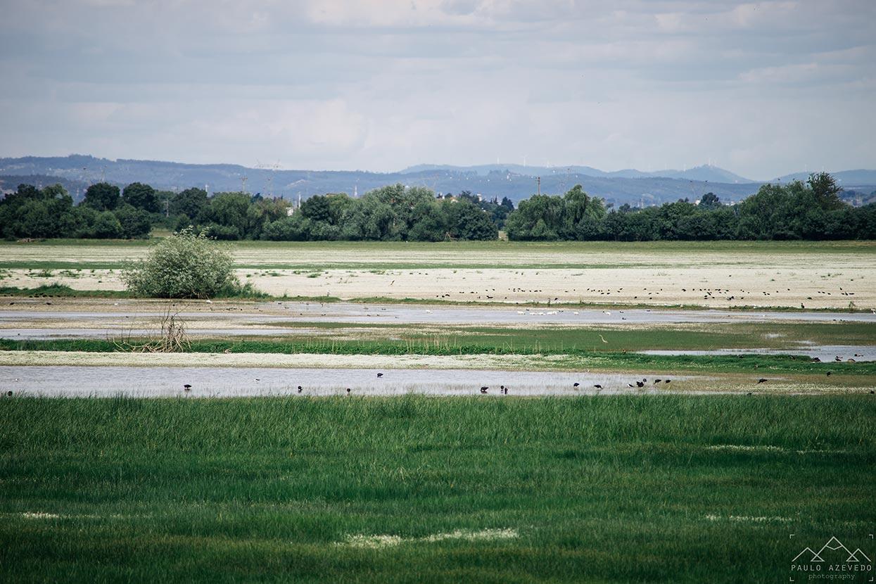 lago, paul do boquilobo