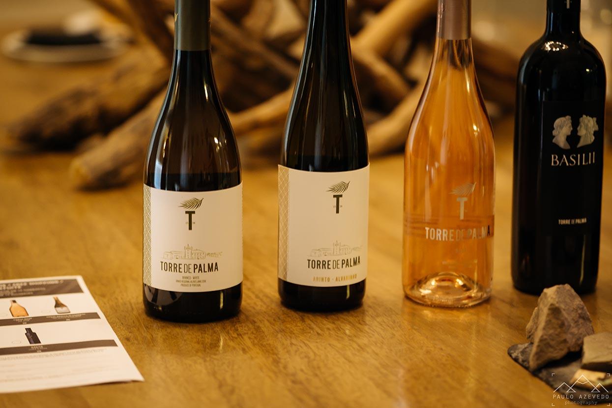 vinhos torre de palma